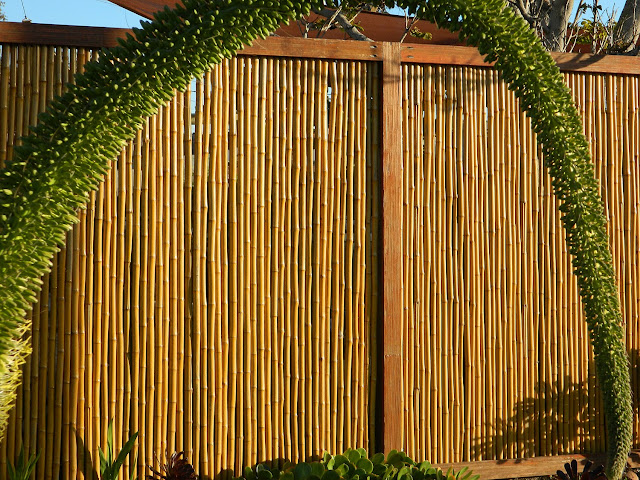 Bamboo Fencing7
