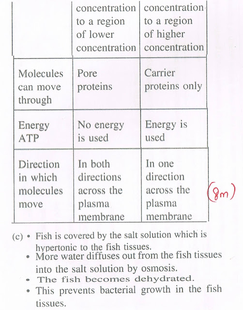 Biology form 5 chapter 4 essay question