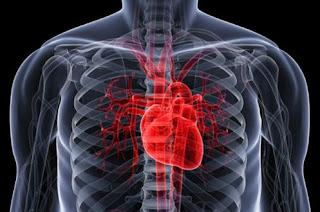 Rajin Jalan Cepat, Bikin Jantung Sehat
