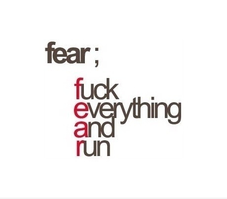 Fuck everything and run