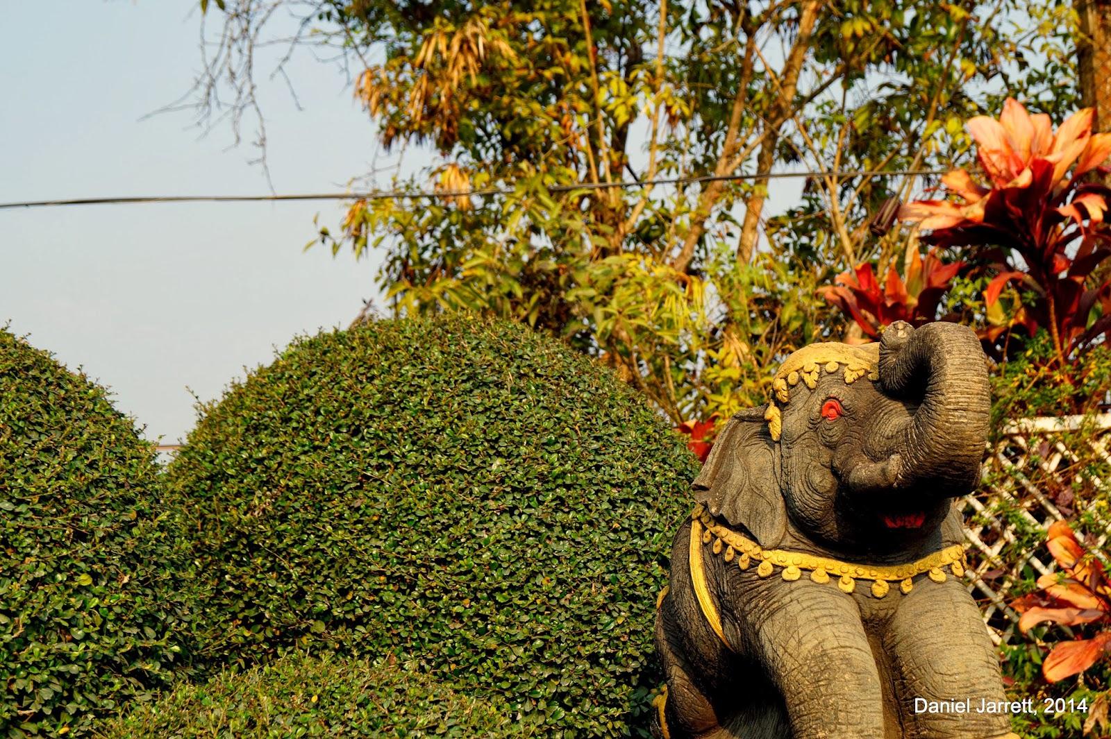 Chiang Rai Elephant
