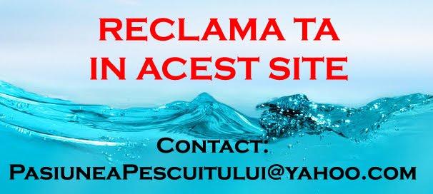 RECLAMA TA IN ACEST SITE