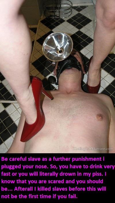 slave captions toilet cuckold