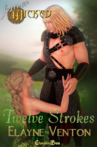 Twelve Strokes by Elayne S. Venton