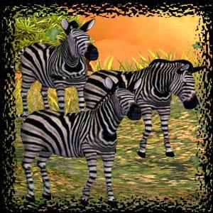 http://3.bp.blogspot.com/-vyaQTSqsVA8/U1nNNZNiR3I/AAAAAAAACss/yk_CbehpfnI/s1600/Mgtcs__Zebras.jpg
