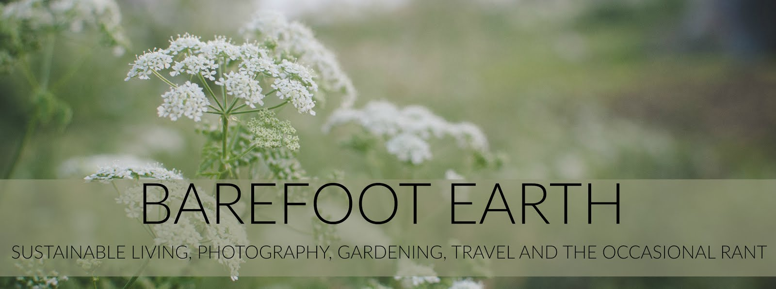 Barefoot Earth