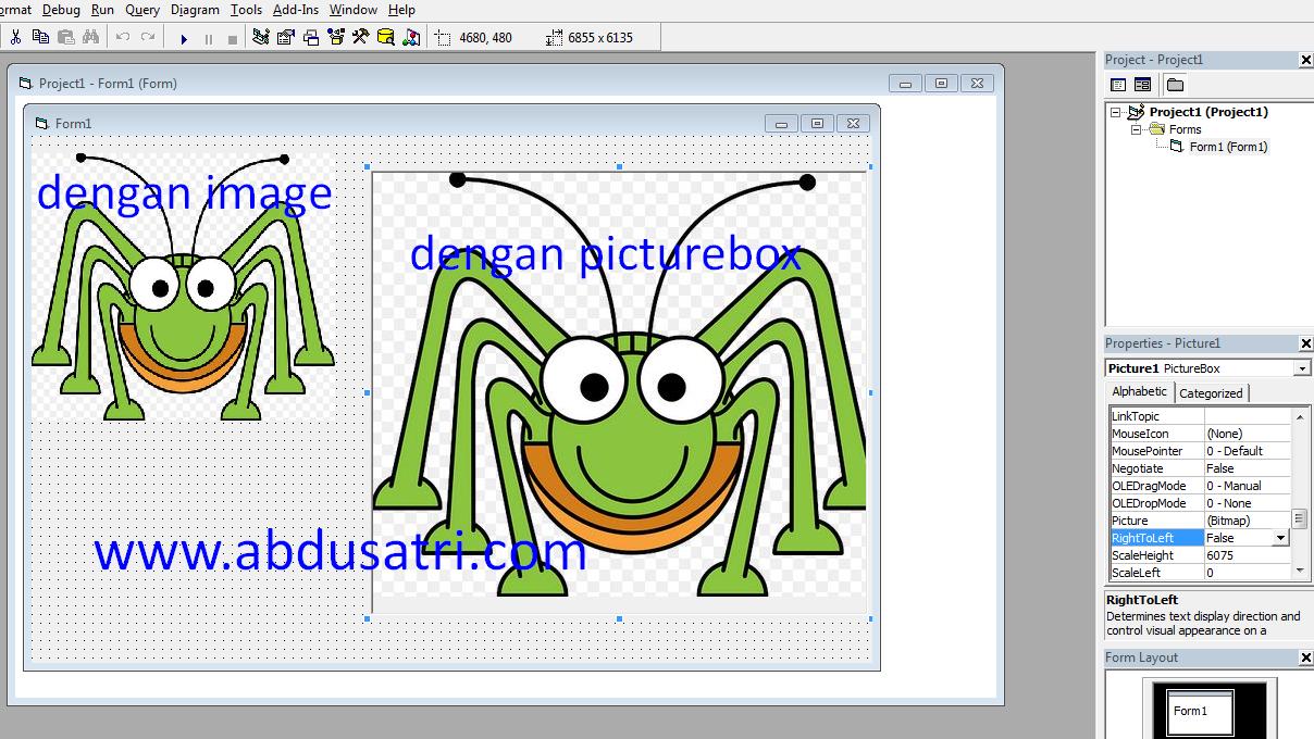 perbedaan picturebox dan image di vb 6.0