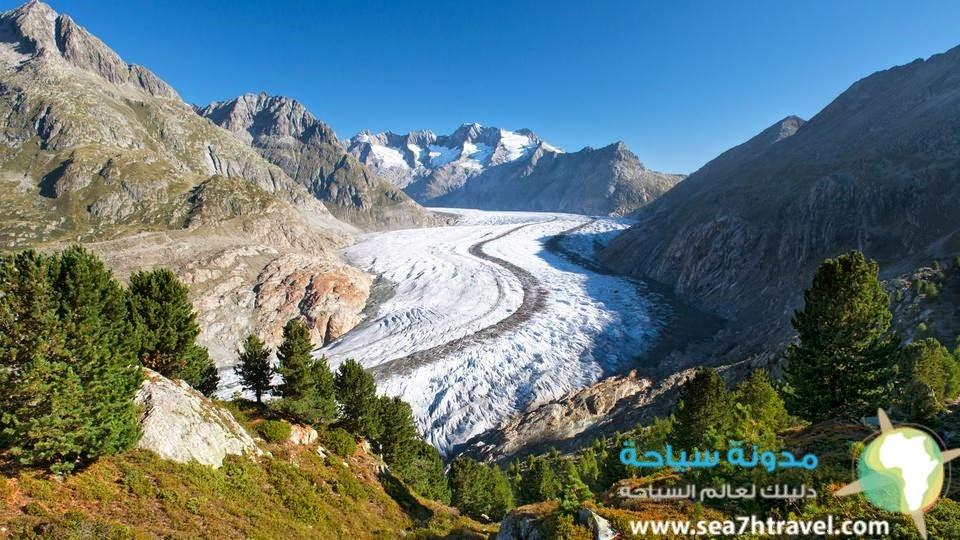 رحلة نهر أليتش الجليدي في سويسرا