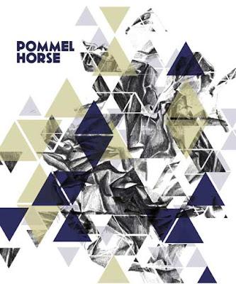 Pommel Horse Delhi