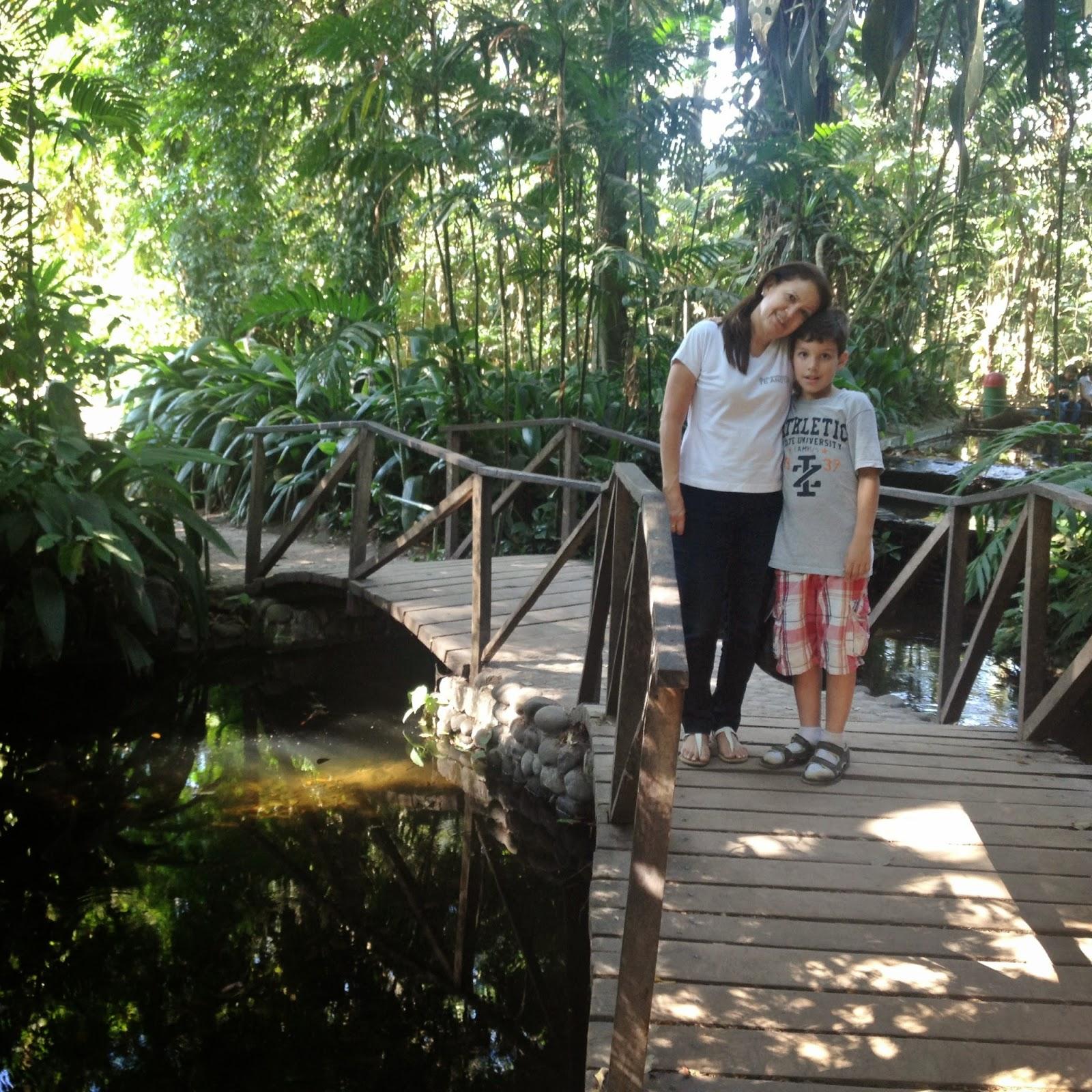Imagenes jard n bot nico la laguna antiguo cuscatl n for Vivero el botanico