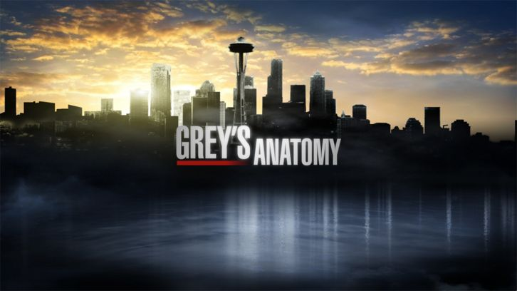 Grey's Anatomy - Episode 11.07 - Can We Start Again, Please? - Press Release