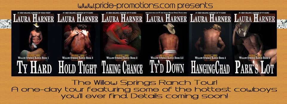 Blog Tour Stop for Laura Harner