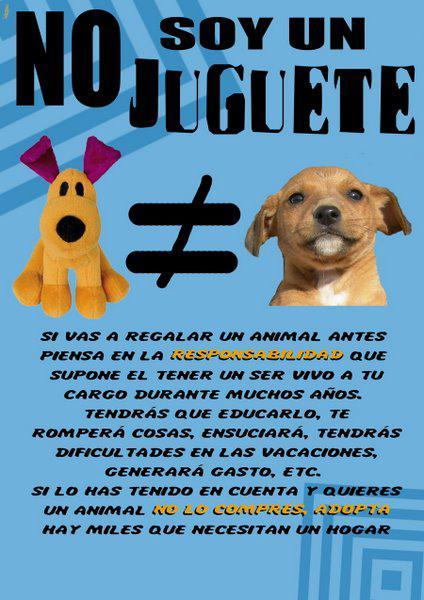 VENTA DE ANIMALES = VENTA DE PERSONAS... NO SON JUGUETES, SON SERES SINTIENTES