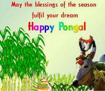 Happy Pongal 2016 Greetings Wishes Status Pictures Free Download