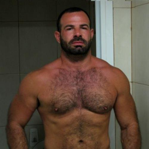 Hot gay bear picture galleries