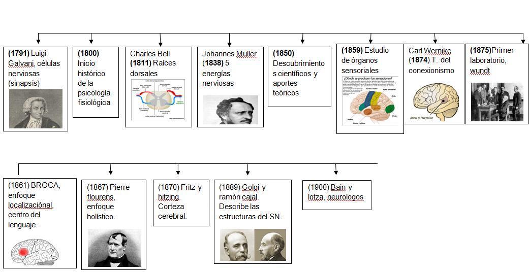 biological psychology: 2012
