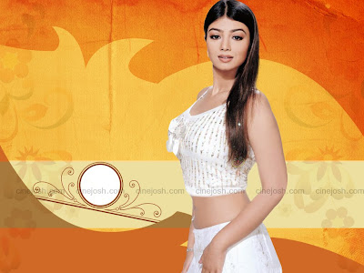 Ayesha Takia Hq Wallpaper