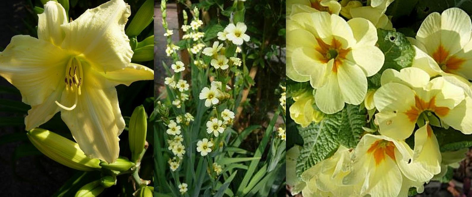 Gartendeko Blog Gartenideen Pflanzen als Dekoelemente