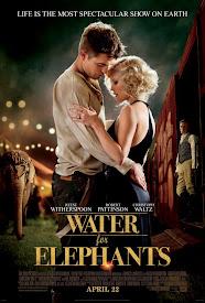 Agua para Elefantes Poster