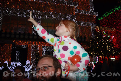 Snow at Osborne Spectacle of Dancing Lights