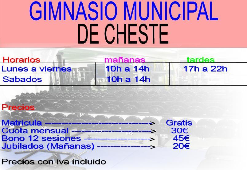 Gimnasio pabellon cheste gimnasio cheste for Gimnasio 60 entre 8 y 9