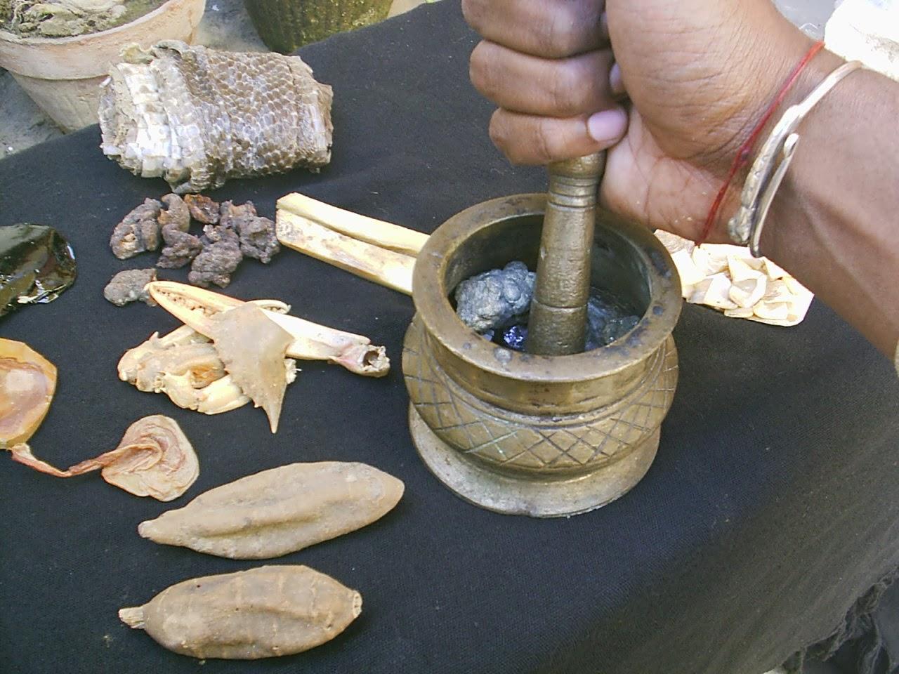 Dhaaro Herb Shop