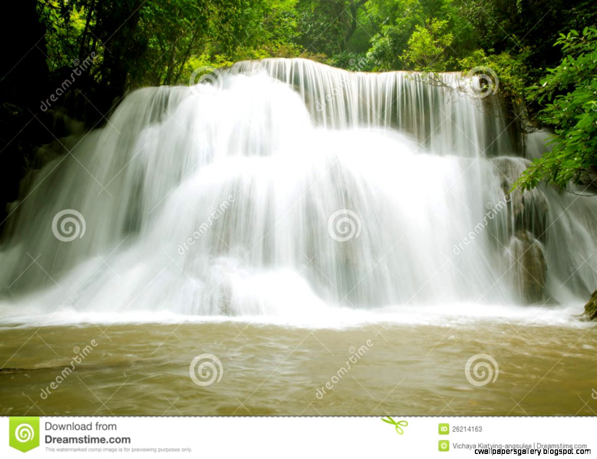 Tropical Rain Forest Waterfall Stock Photos   Image 26214163
