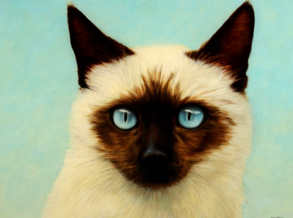 Cuadros Modernos: Cuadros Realistas con Animales, Obras al