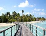 Solucion Bora Bora Escape Guia