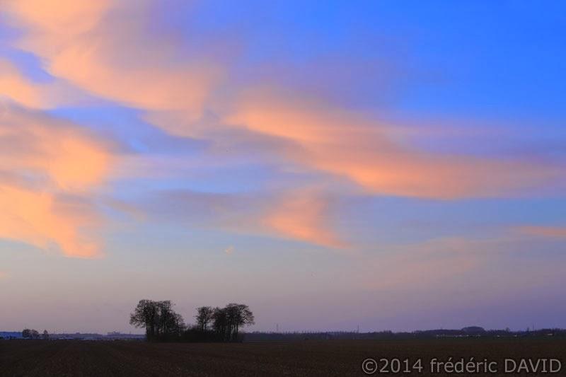 matin ciel nuages arbres champs Seine-et-Marne