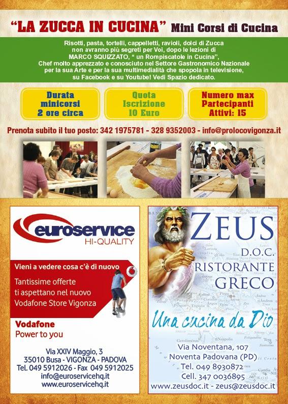 www.prolocovigonza.it