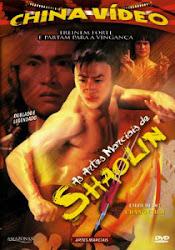 As Artes Marciais de Shaolin Online Dublado