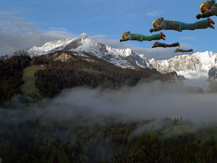 15. V-formation flying in the Alps