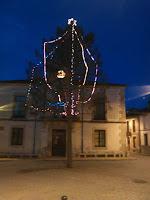 Pino-Navidad1