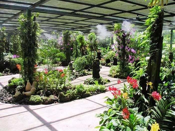 botanic-garden-di-singapura