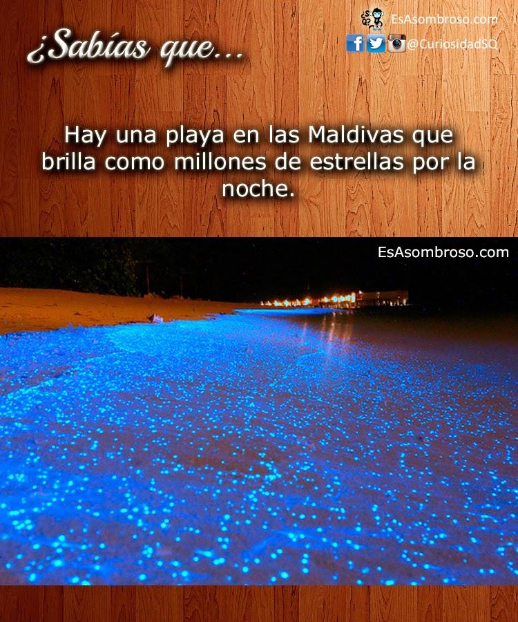 Hay una playa en las Maldivas que brilla como millones de