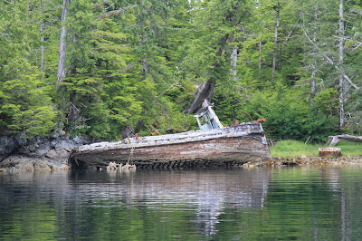 An Abandoned Boat in Barnard Harbour; Right: Eagle in Flight and Layers of Princess Royal Island