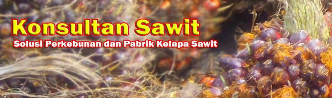 Konsultansi Perkebunan Kelapa Sawit