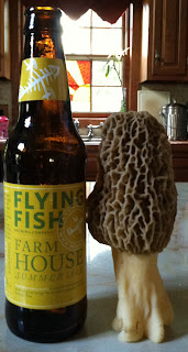 giant morel