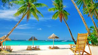 tatil resimleri tatil yöreleri yaz deniz kenarı kumsal ve ağaçlar