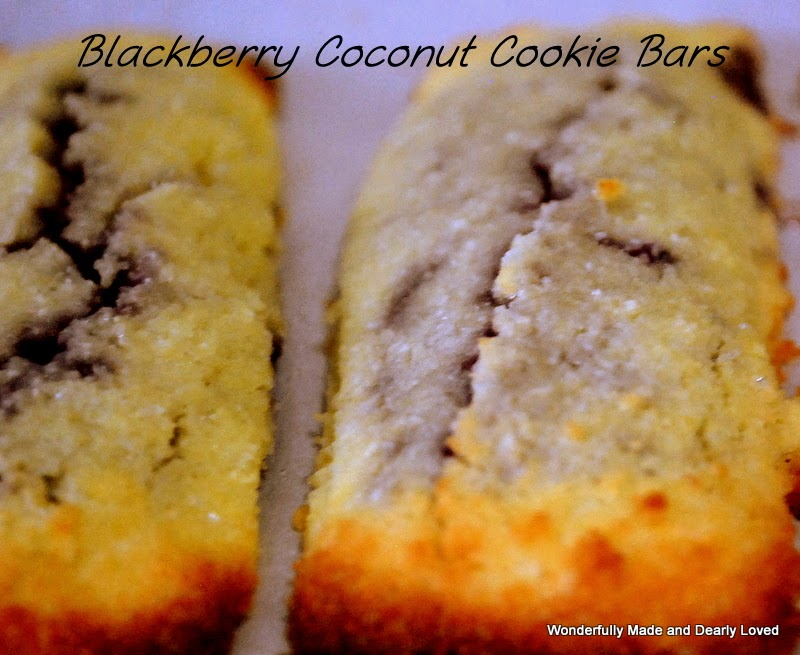 Blackberry Coconut Cookie Bars (Trim Healthy Mama)