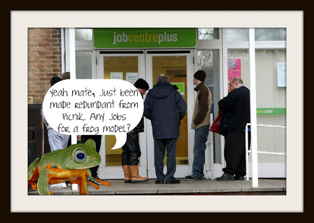 Picnik frog job centre