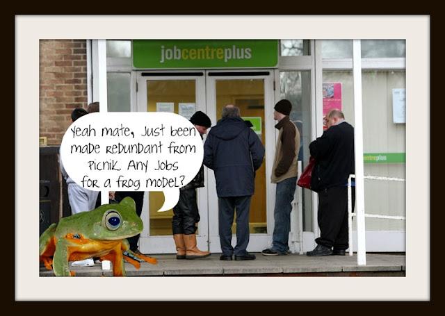 Picnik frog job centre