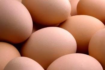 Πόσα αυγά μπορούμε να τρώμε χωρίς να βλάπτουμε την υγεία μας;