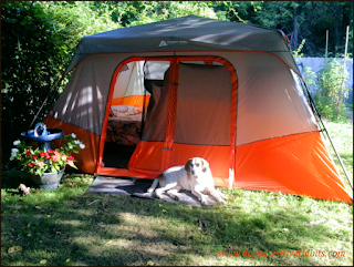 My dog Valentino camped out at the tent door.
