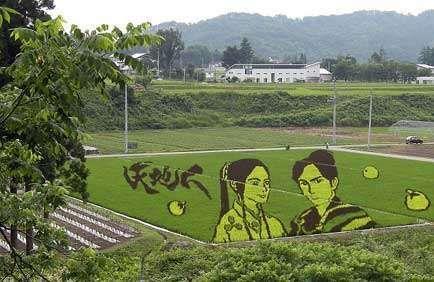 Simsalabim !! Sawah Disulap Jadi Lukisan Di Jepang !! [ www.BlogApaAja.com ]