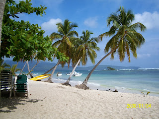 Haitianarts Samanà snorkeling spiagge