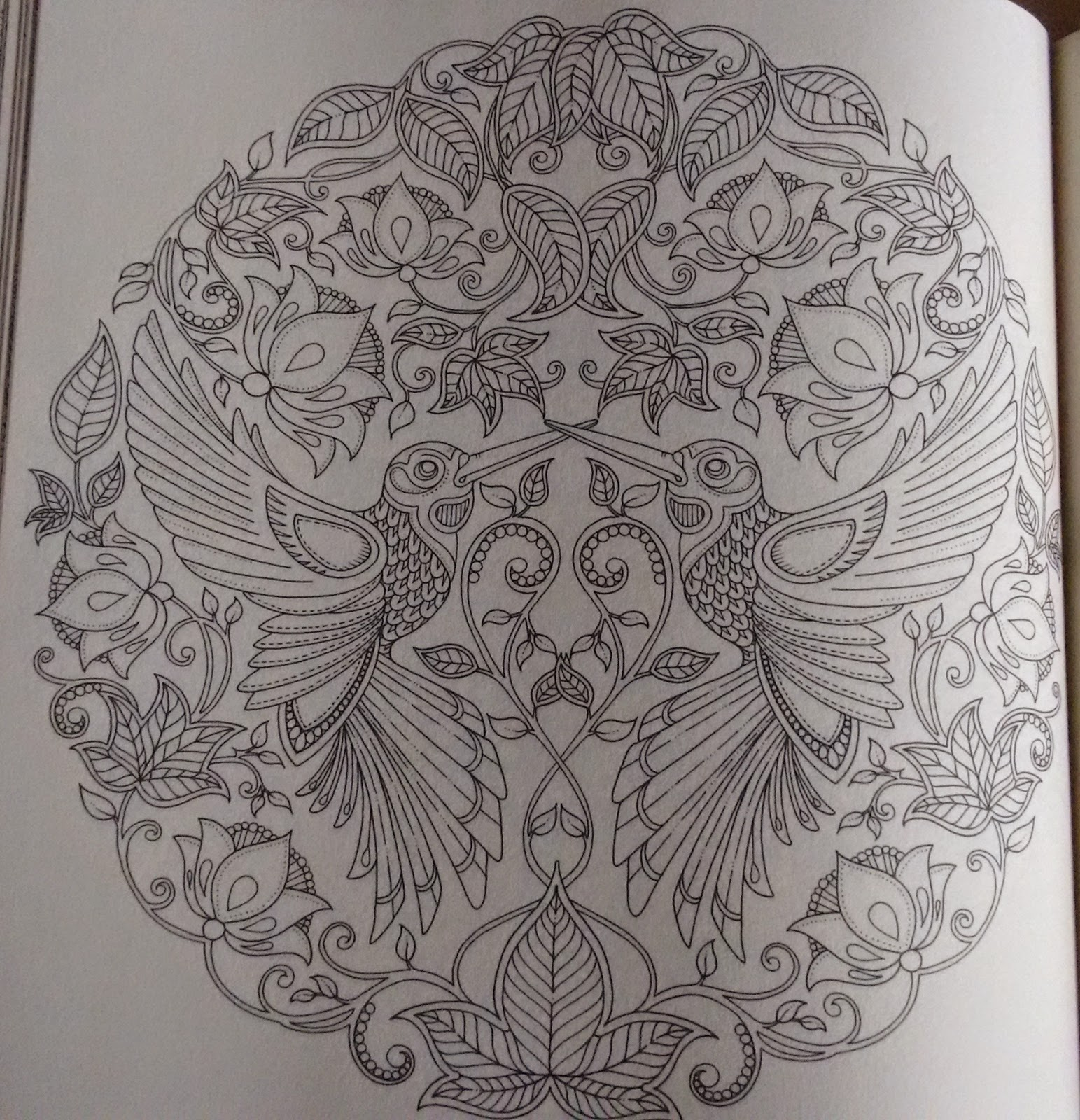 flor azul jardim secreto:Como eu tinha comprado a caixa de lápis metálicos da Faber, resolvi