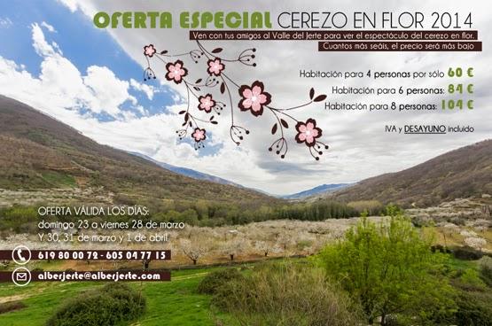 Cerezo en flor 2014 Valle del Jerte