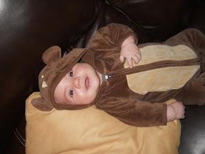 My Drew Bear